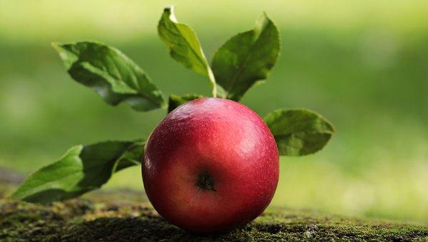 Fazla Kilolardan Kurtulmak İçin Elma Sirkesi